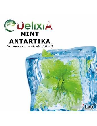 Delixia MINT ANTARTIKA 10ml aroma concentrato