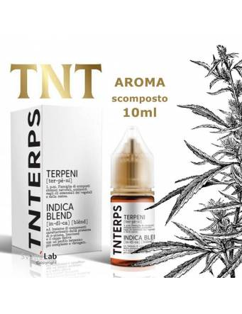 TNTERPS Indica Blend 10ml aroma scomposto (mini shot)